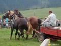 www.zdiar.eu - Konské záprahy, 5.8.2012, Ždiar-Strednica